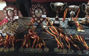 Junior medals